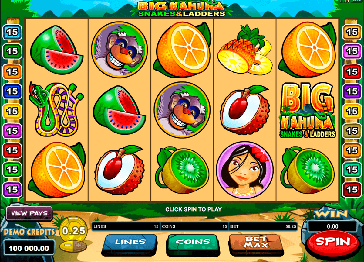big kahuna snakes and ladders microgaming casino slot spel