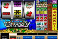 cash crazy microgaming casino slot spel