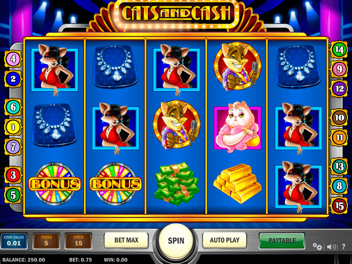 cats and cash playn go casino slot spel