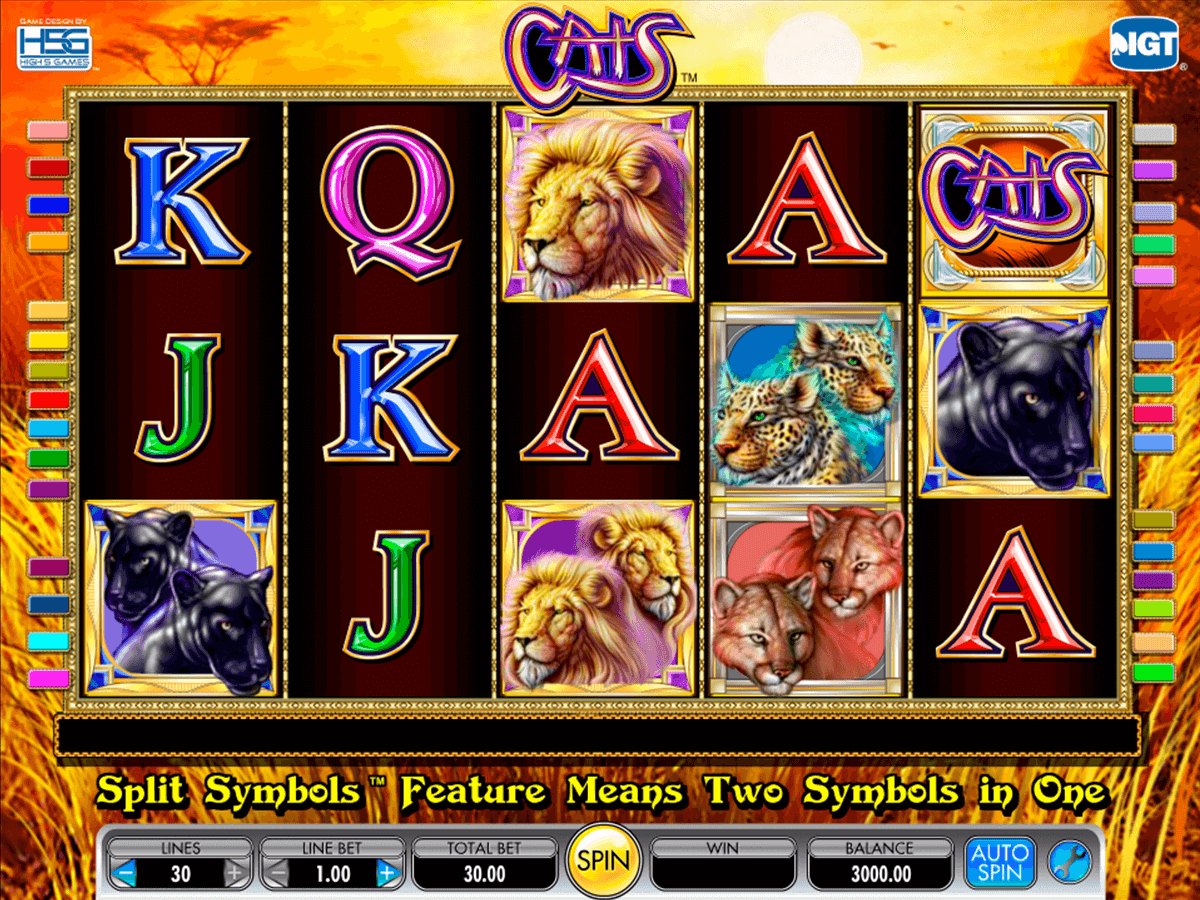 cats igt casino slot spel