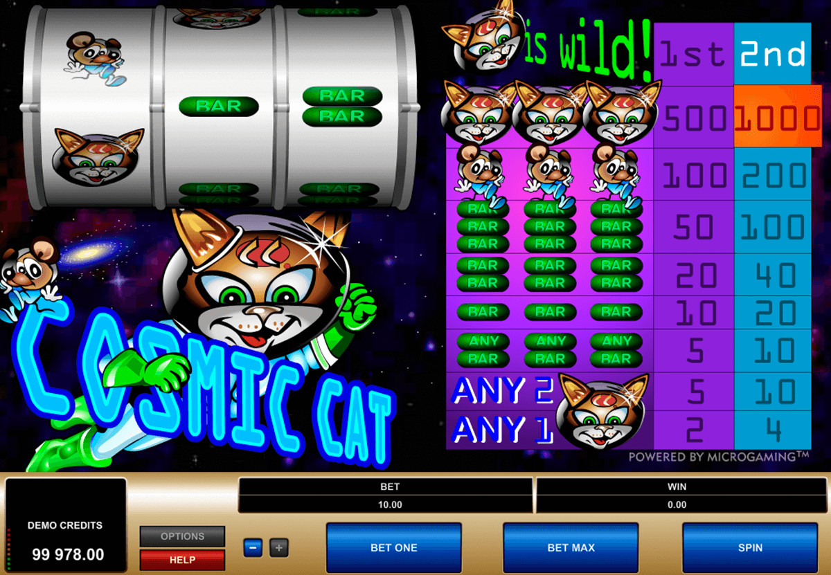 cosmic cat microgaming casino slot spel