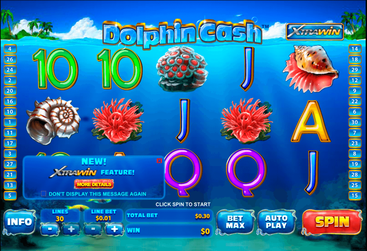 dolphin cash playtech casino slot spel