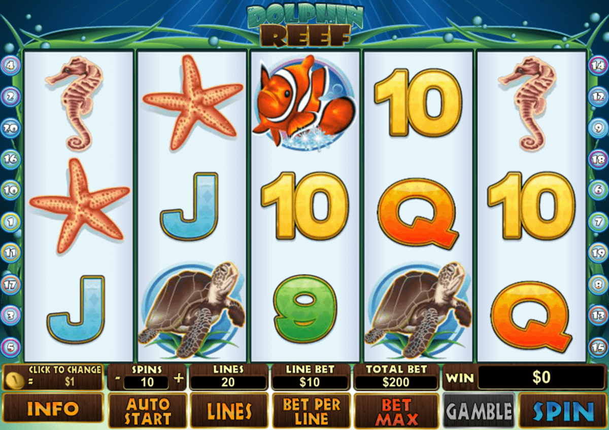 dolphin reef playtech casino slot spel