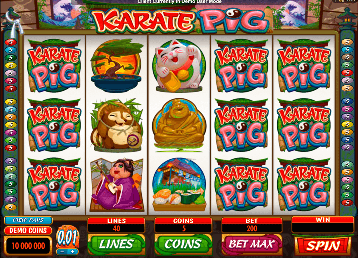 karate pig microgaming casino slot spel