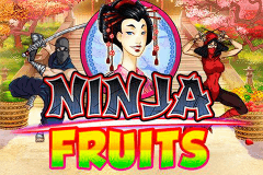 logo ninja fruits playn go spelauatomat