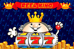 logo reel king novomatic spelauatomat