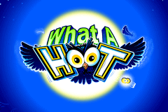 logo what a hoot microgaming spelauatomat