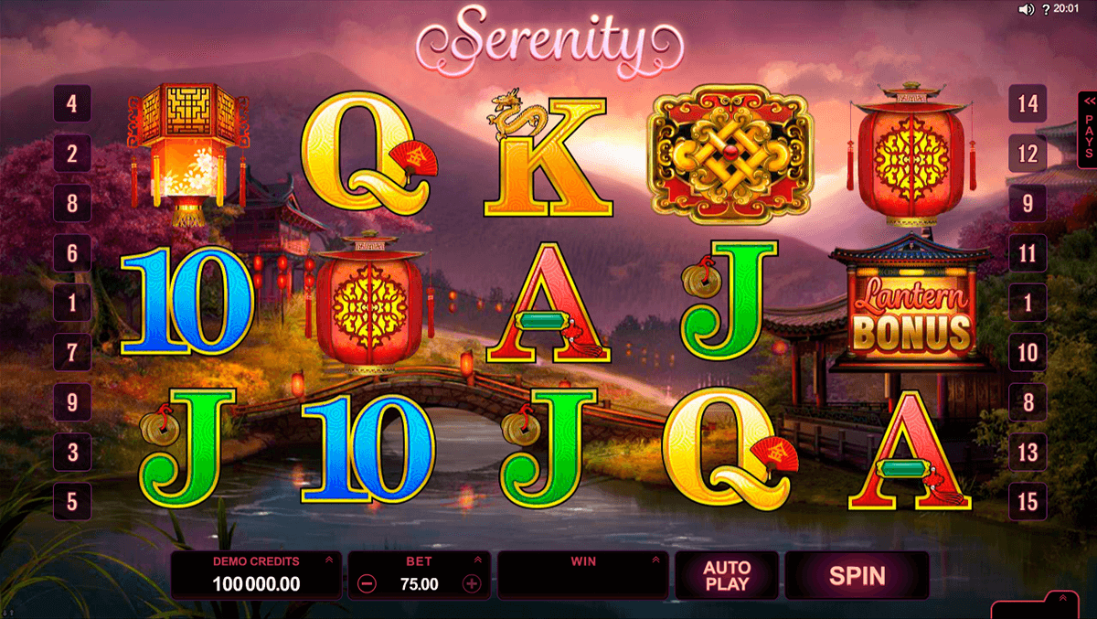 lucky twins microgaming casino slot spel