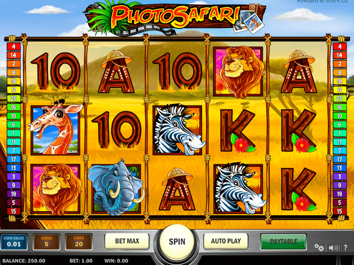photo safari playn go casino slot spel