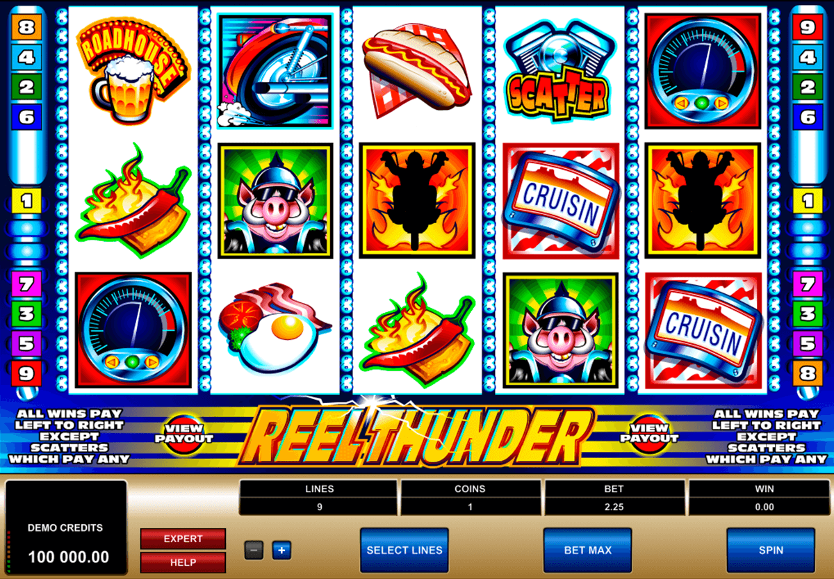 reel thunder microgaming casino slot spel