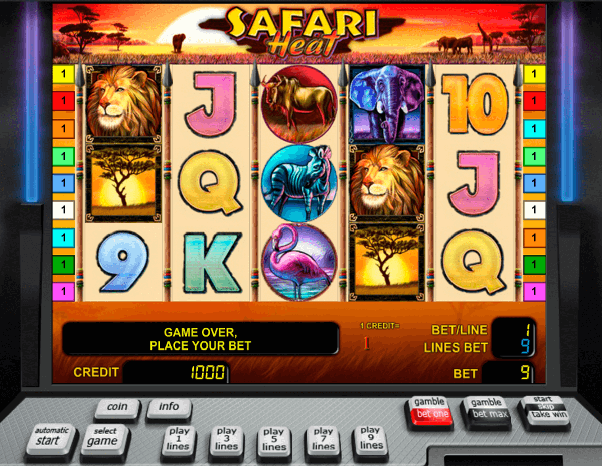 safari heat novomatic casino slot spel