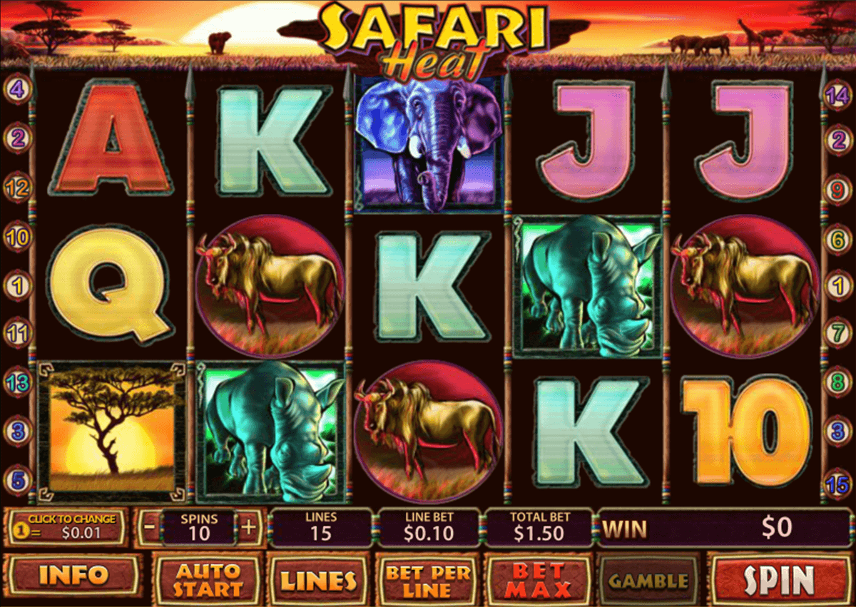safari heat playtech casino slot spel