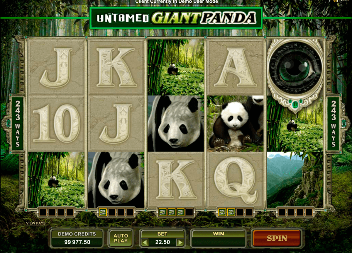untamed giant panda microgaming casino slot spel