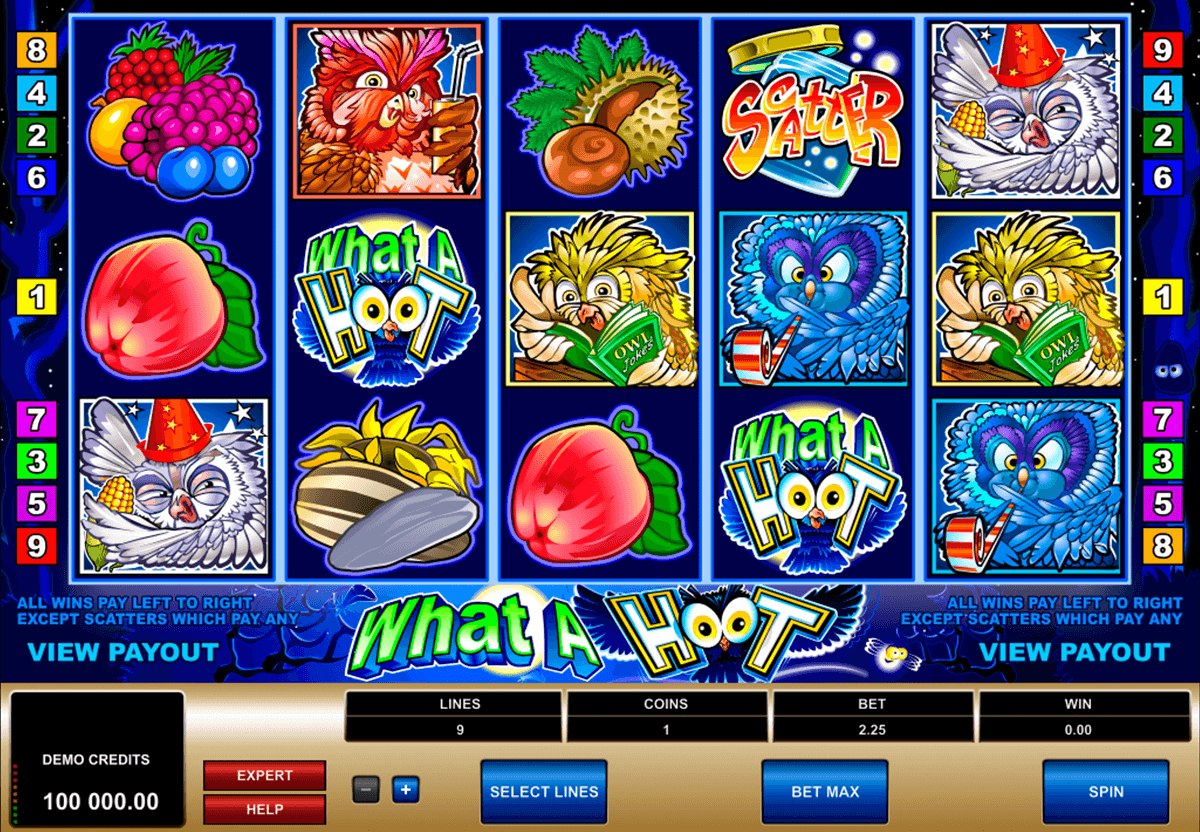 what a hoot microgaming casino slot spel