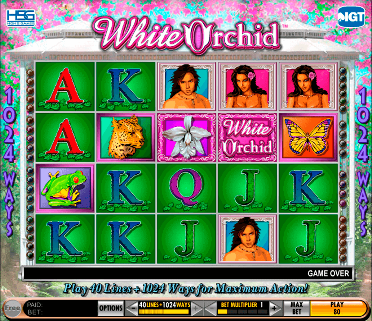 white orchid igt casino slot spel
