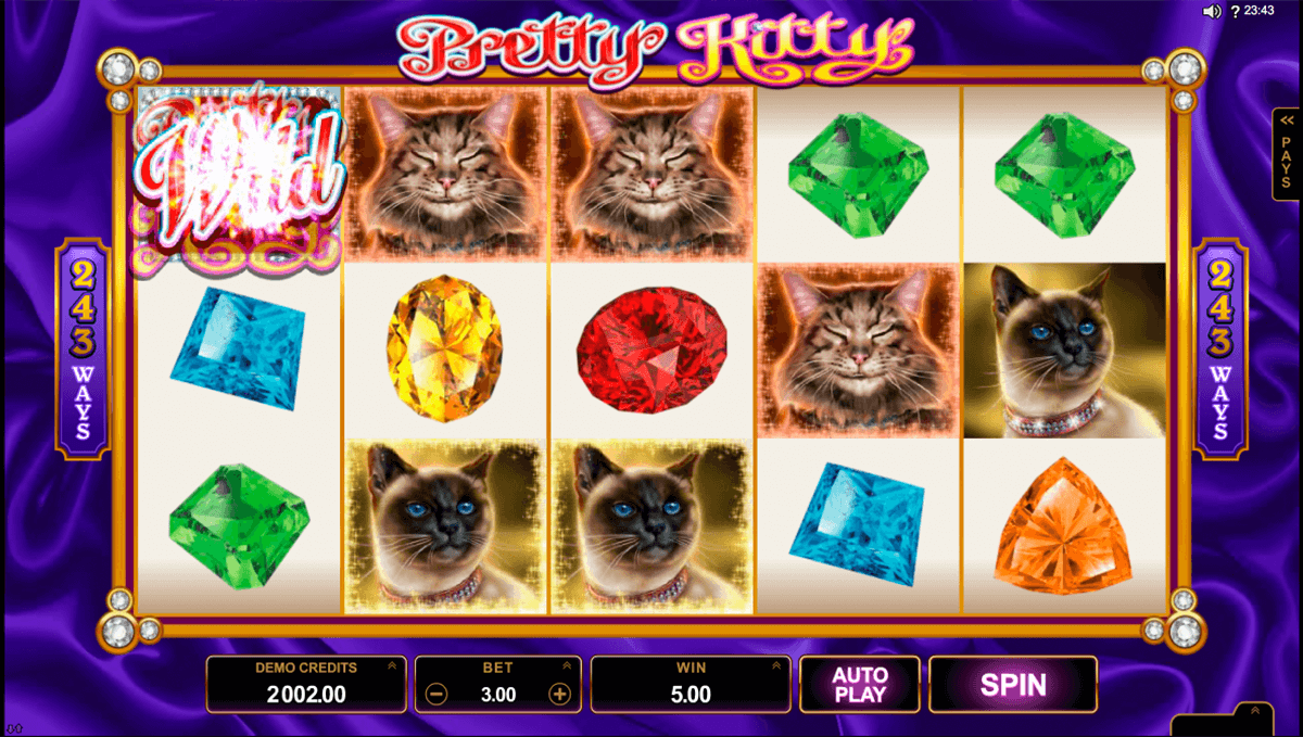 win sum dim sum microgaming casino slot spel
